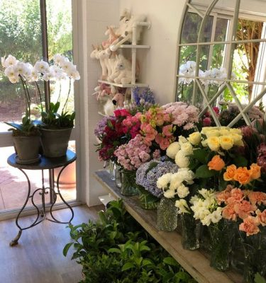 Dawn Osborne Florists Choice $50
